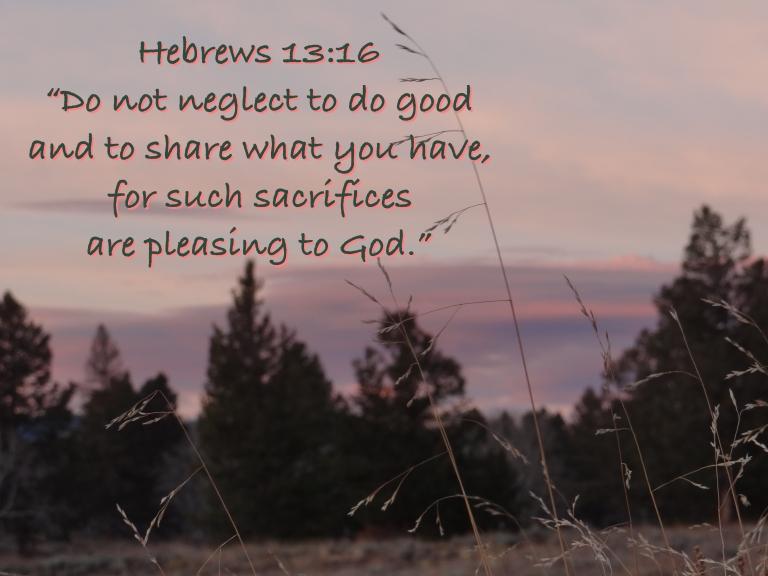 Hebrews 13-16