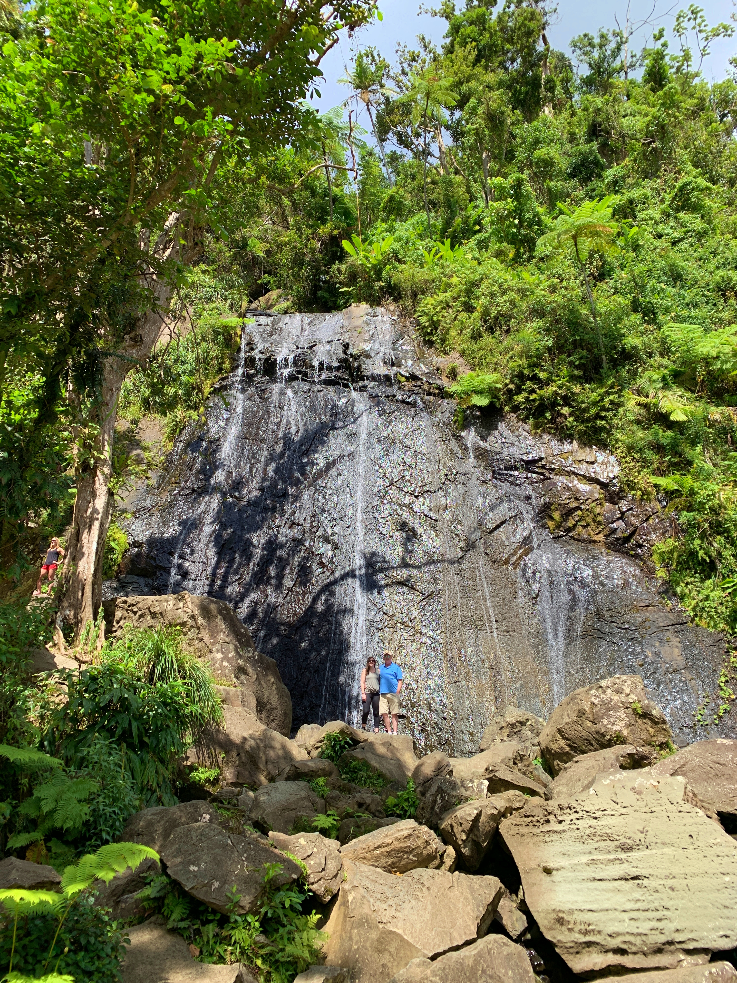 A Place To Call Home By Amy Schisler Reviews Discussion A Place To Call Home Book On Our Visit To El Junque Rainforest, We Drove To A Beautiful Waterfall  Where Dozens Of Tourists Were Stopping For Pictures. Sadly, It Was The Only  Place In ...