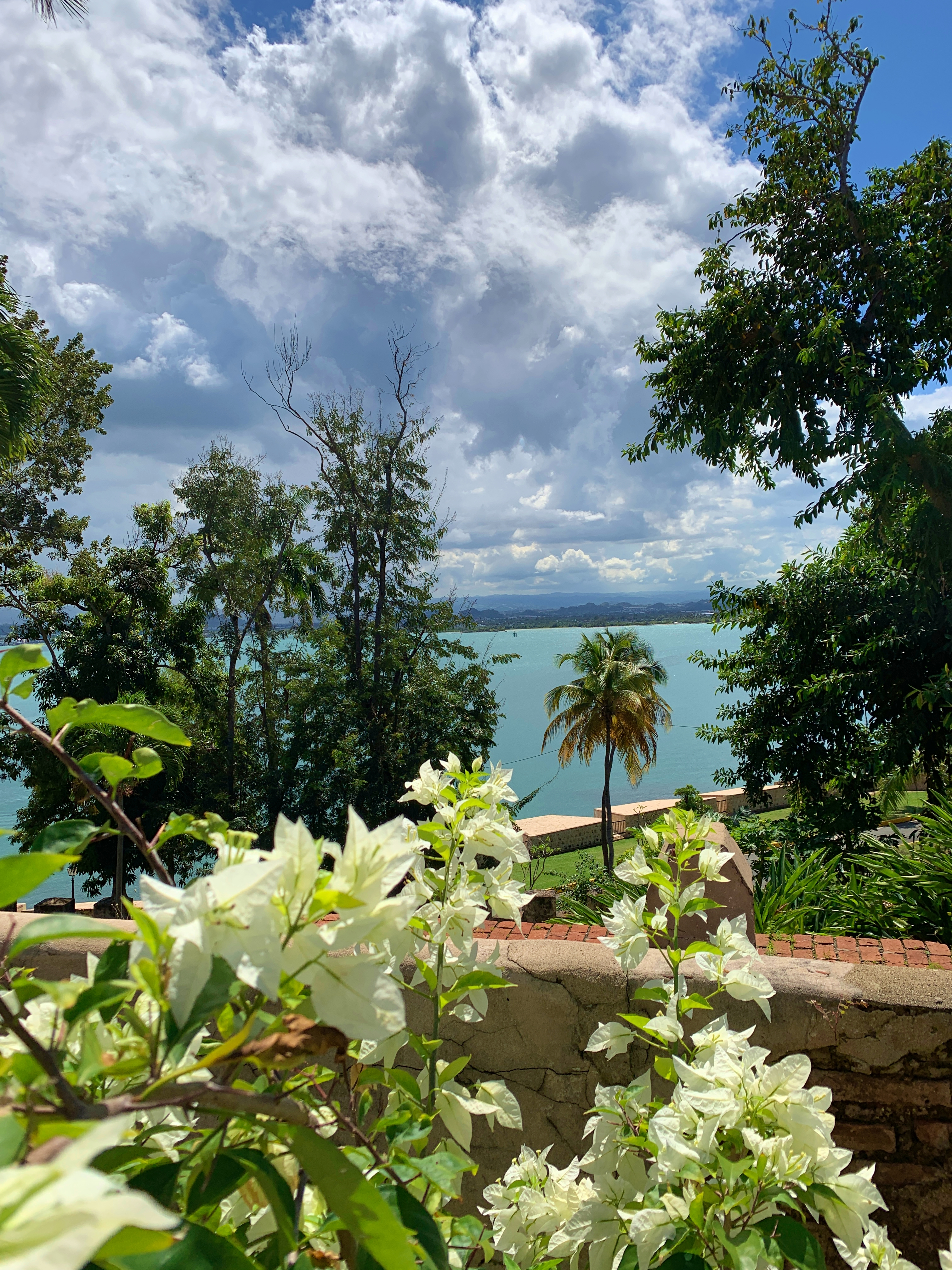 a place to call home by amy schisler reviews discussion a place to call home book On a recent trip to the beautiful island group of Puerto Rico, I was amazed  by the beauty, intrigued by the history, and stunned by the infrastructure.