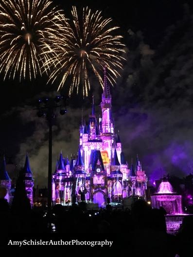 Disney fireworks.jpg