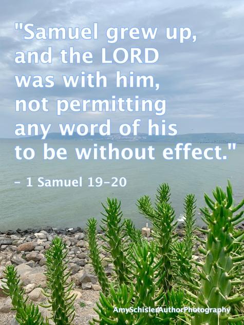 1 Samuel 19-20.jpg